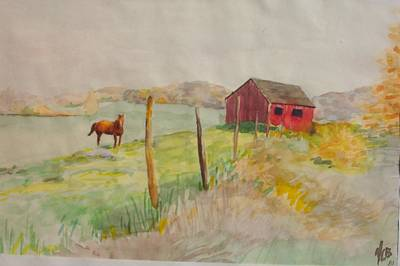 Pasture In Lagrangeville Art Print