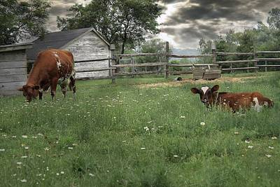 Photograph - Pasture by Scott Hovind