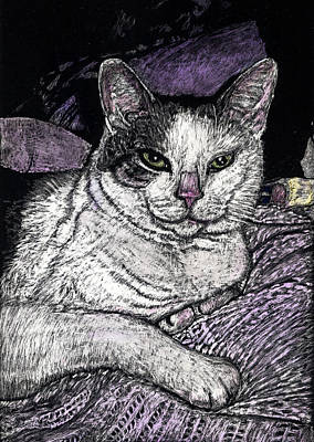 Patches The Cat Art Print by Robert Goudreau