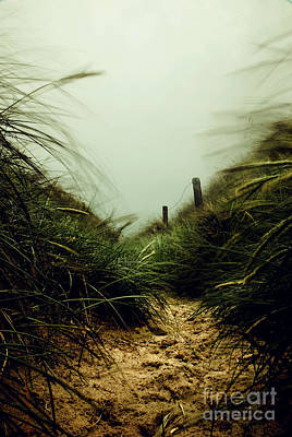 Path Through The Dunes Art Print by Hannes Cmarits