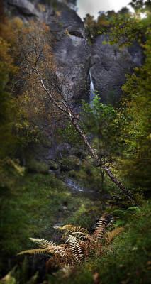 Photograph - Path To Culnaskiach Falls by Joe Macrae