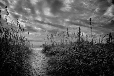 Path To Serenity Original
