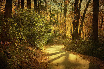 Pathway Between Woods Art Print by Jody Trappe Photography