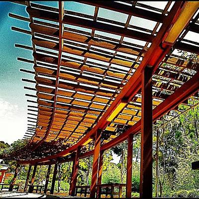 Pathway Photograph - #pathway #japanese #garden #balboapark by Rick Macias