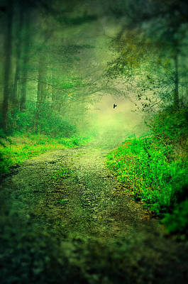 Photograph - Pathway Of Green by Emily Stauring