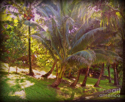 Photograph - Pathway by Paulette B Wright
