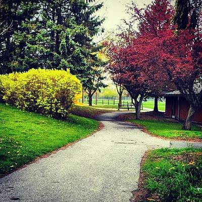 Pathway Photograph - Pathway To The Park II #pathway #path by Jess Gowan