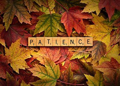 Photograph - Patience-autumn by  Onyonet  Photo Studios