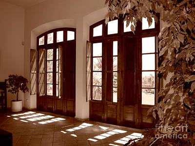 Photograph - Patio Doors by Michael Canning