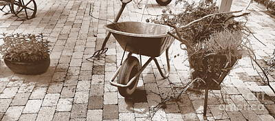 Photograph - Patio by Michael Canning