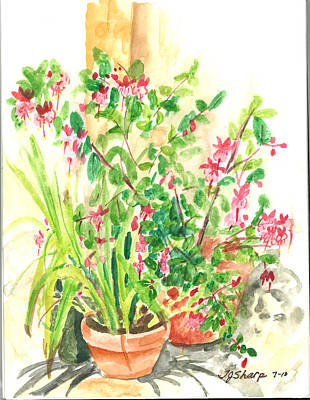 Patio Pots Art Print by Teresa J Sharp