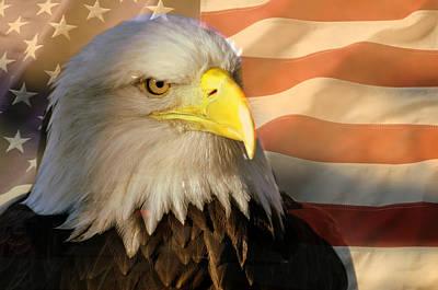 Patriotic Eagle Art Print by Marty Koch