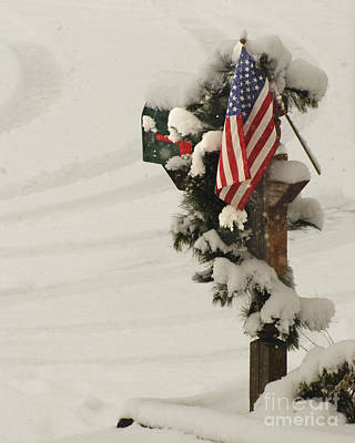 Photograph - Patriotic Holiday Mailbox by Margie Avellino