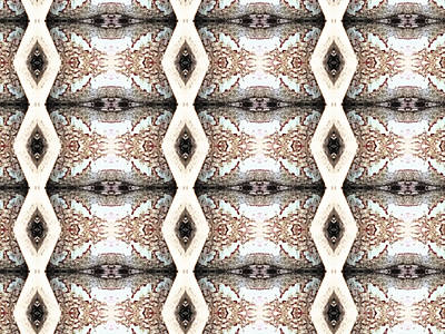 Photograph - Pattern 1 by Tammy Herrin