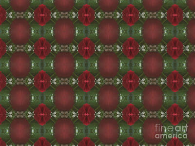 Photograph - Pattern 4 by Tammy Herrin