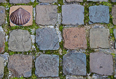 Photograph - Paving Stones by David Freuthal