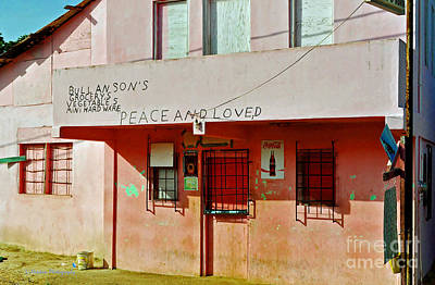 Photograph - Peace And Loved by Li Newton