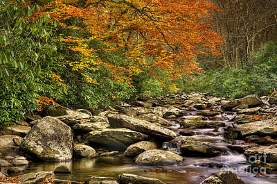 Photograph - Peaceful Autumn Stream by Cheryl Davis