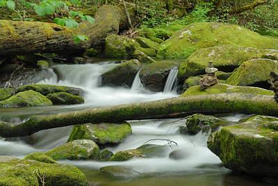 Photograph - Peaceful Creek by Joye Ardyn Durham