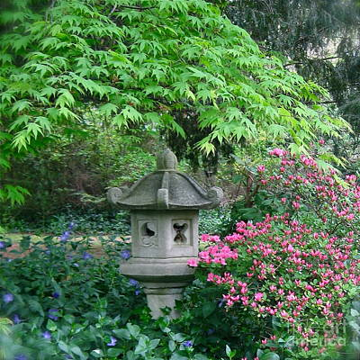 Photograph - Peaceful Garden  by Nancy Patterson
