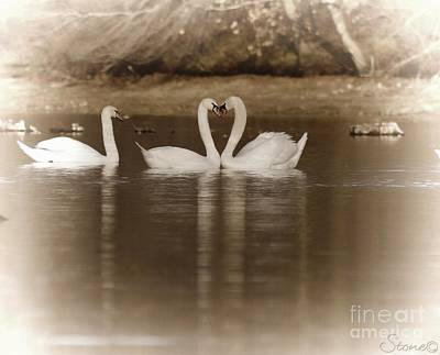 Photograph - Peaceful Harmony  by September  Stone