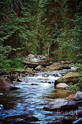 Peaceful Mountain River Art Print by Lisa Holmgreen