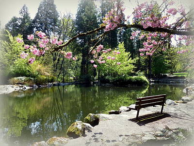 Photograph - Peaceful Park Bench by Cindy Wright