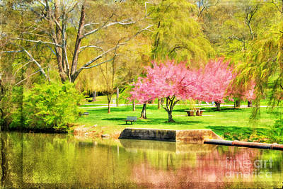 Floral Scene Garden Photograph - Peaceful Spring II by Darren Fisher