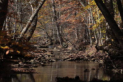 Photograph - Peaceful Stream by George Miller