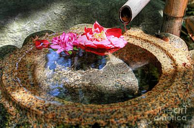Duke Gardens Photograph - Peaceful Water by Sari Sauls