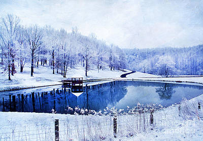 Peaceful Winters Day Art Print by Darren Fisher