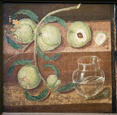 Peaches And A Glass Jug, Roman Fresco Art Print by Sheila Terry