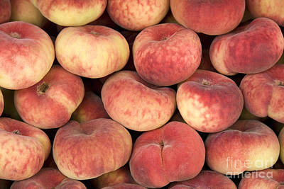 Ripe Photograph - Peaches by Jane Rix