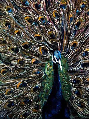 Peacock 2 Art Print by Amanda Dinan