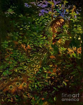 Painting - Peacock In The Woods by Pg Reproductions