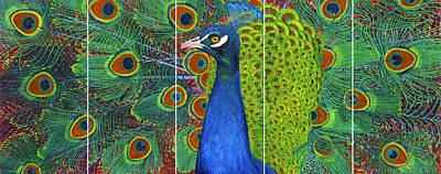 Lisa Rodriguez Painting - Peacock Pride by Lisa Rodriguez