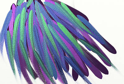 Peacock Wig Art Print
