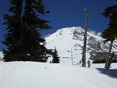 Photograph - Peak Of Mt Hood Oregon by Glenna McRae
