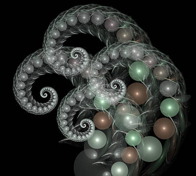 Fern Digital Art - Pearl Curls by Pam Blackstone