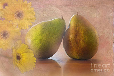 Gerbera Daisy Digital Art - Pears And Flowers by Betty LaRue