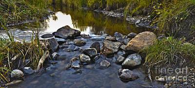 Photograph - Pebbles by Edward Kovalsky