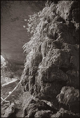 Photograph - Pedernales Falls Tx by Julie VanDore