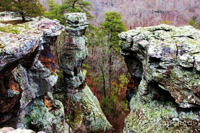 Food And Flowers Still Life - Pedestal Rocks Scenic Area Pelsor Arkansas  by Carolyn Wright