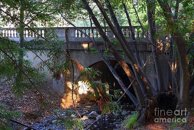 Pedestrian Bridge And Strawberry Creek  . 7d10132 Art Print by Wingsdomain Art and Photography