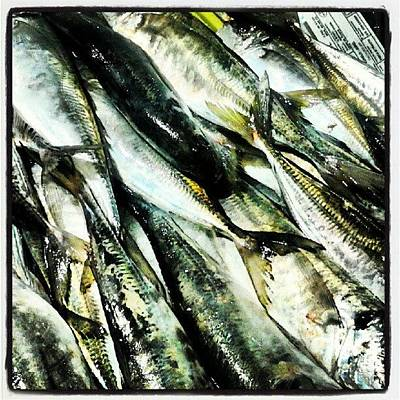 Foodie Wall Art - Photograph - #peixe No #mercado De #ribeira by Noa Comesanha