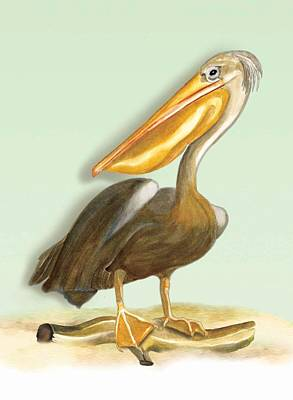 Art Print featuring the painting Pelican Bill by Anne Beverley-Stamps