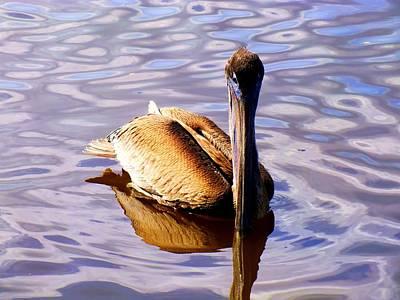Nautical Birds Photograph - Pelican Puddles by Karen Wiles