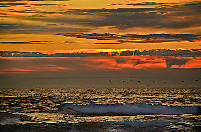 Photograph - Pelicans Flying Home by Robert Bales
