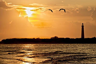 Pelicans Into The Sunset Art Print