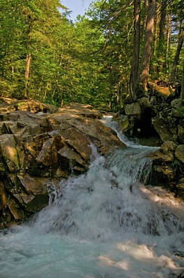 Photograph - Pemigewasset Stream by Paul Mangold